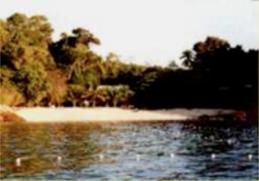 d'lagoon 1